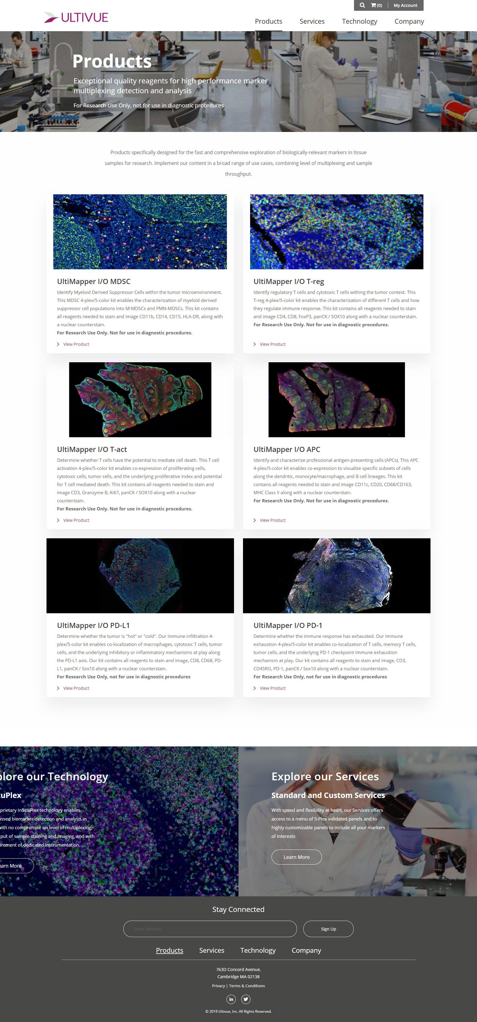 Ultivue Enterprise Website Development and Design Project