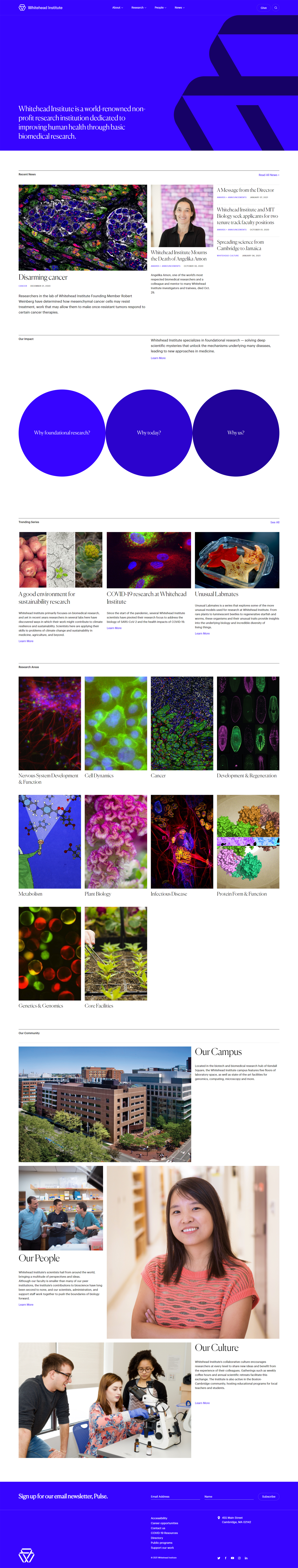 Whitehead Institute of MIT website development project